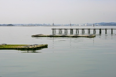 Floating devises in Matsushima Bay, Japan