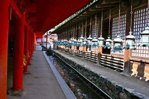 Kasuga shrine in Nara, it is surrounded by many, many lanterns, Nara, Japan